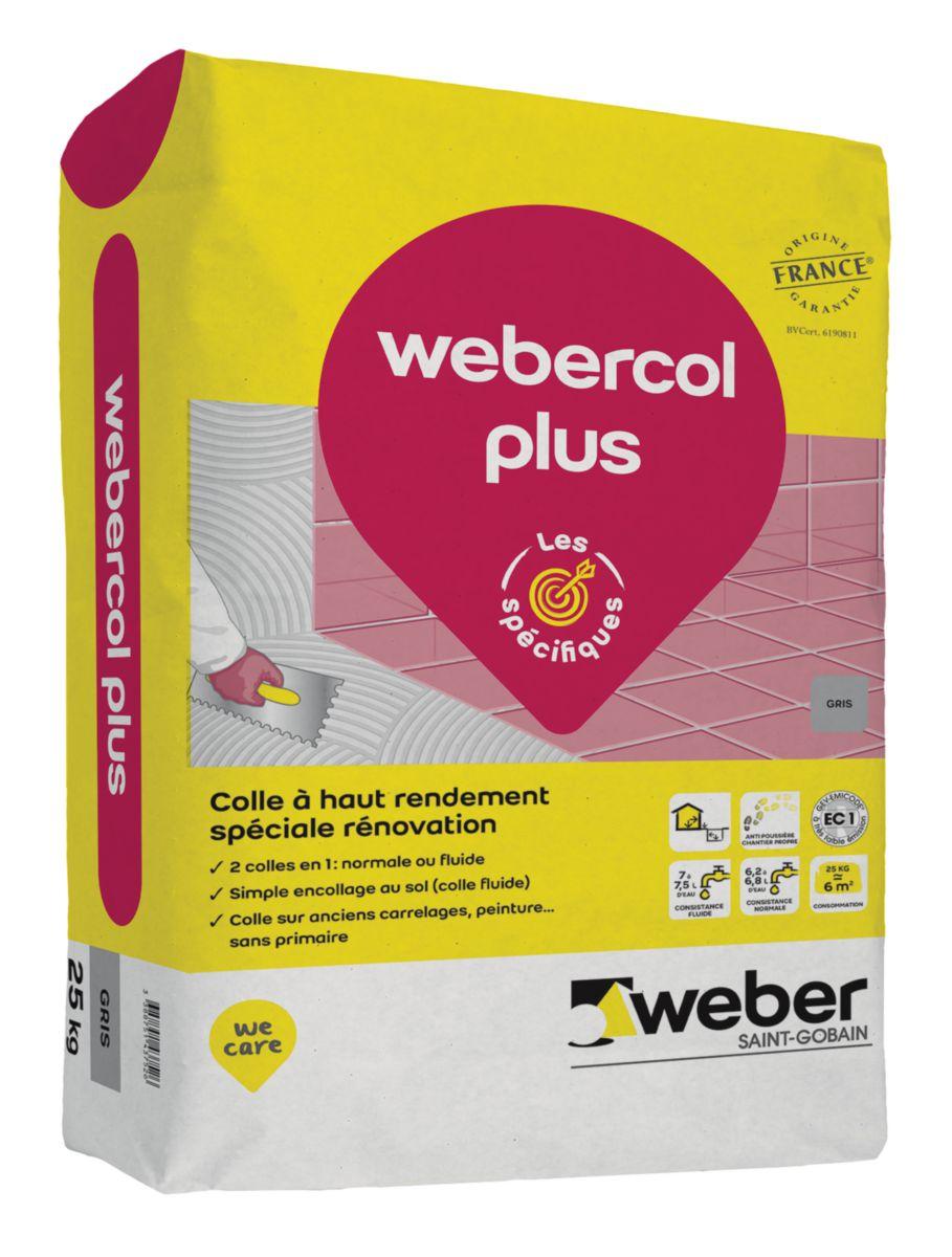 Weber Mortier Colle Ameliore A Double Consistance Pour Carrelage C2 Et Eg Weber Col Plus Weber Gris Sac 25 Kg Cedeo