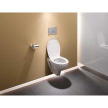 pack wc suspendu vers 39 eau sans bride avec abattant frein de chute alterna sanitaire brossette. Black Bedroom Furniture Sets. Home Design Ideas