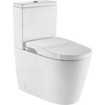 WC lavant à poser au sol INSPIRA IN WASH sans bride